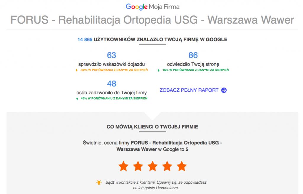 raport google maps